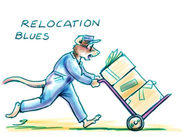 Relocation blues