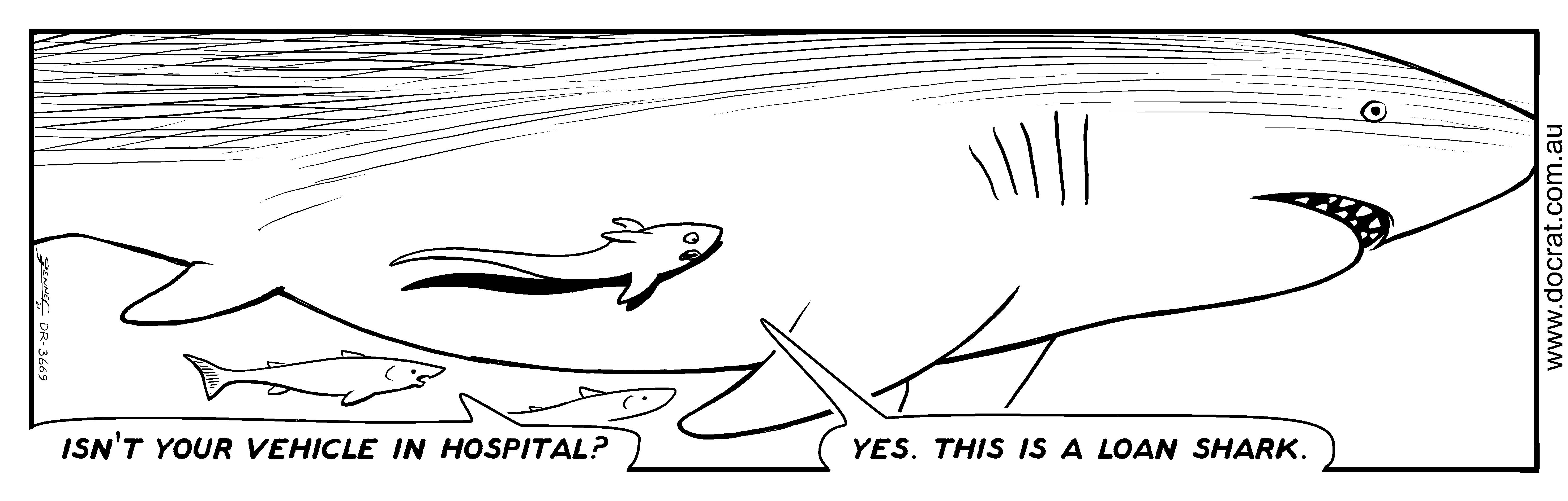 20210204